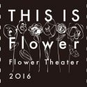 【FINAL】Flower Theater 〜THIS IS Flower〜!レポ・バクステ・セトリ